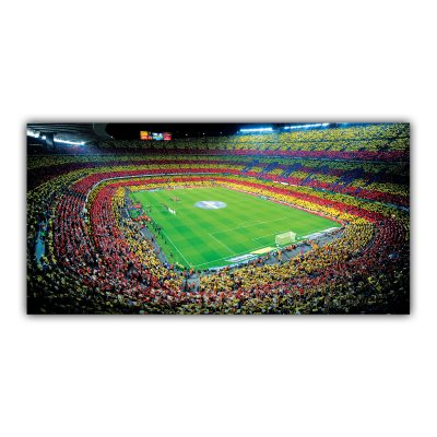 FC Barcelone Football Club Stade