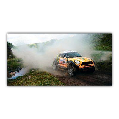 Mini Dakar Rallye Sport